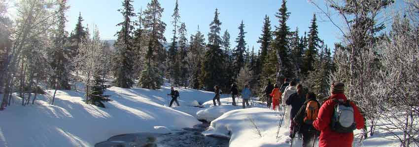 Outdooractiviteiten in de winter in de Ardennen